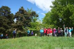 Auvergne 2018 17