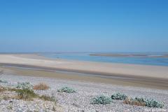 Baie de Somme 2018 14