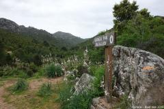Corsica 2018 24